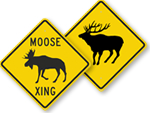 Moose and Elk Crossing Signs