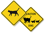 Cat Crossing Signs