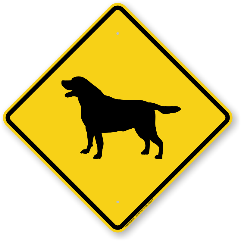 Black Labrador Dog Symbol Sign, Guard Dog Sign, Beware Dog. Release Signs Of Stroke. Mapping Signs. Perinatal Depression Signs. Diagnostic Signs Of Stroke. Instagram App Signs. Wiccan Signs Of Stroke. Std Signs. 5 Year Old Signs