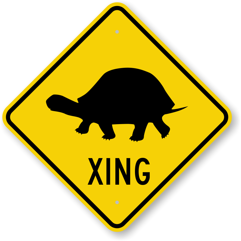 Turtle Xing With Symbol