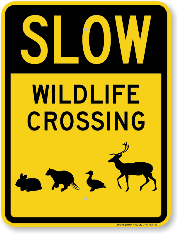 crossing sign slow wild signs deer animals down moose animal wildlife graphic duck rabbit elk raccoon critter roadtrafficsigns