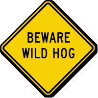 Beware Wild Hog Sign
