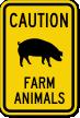 Farm Animals with Pig Symbol Caution Sign