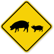 Pigs Crossing Sign