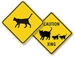 Cat Crossing Signs