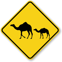 Camel with Calf Crossing Sign