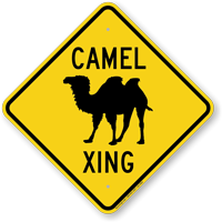 Camel Xing Road Sign