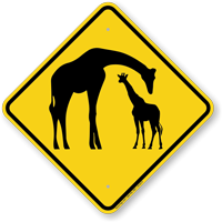 Giraffe with Calf Crossing Sign