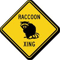 Raccoon Xing Symbol Sign