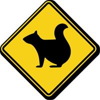 Squirrel Crossing Symbol Sign