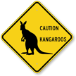 Caution Kangaroos Crossing Sign