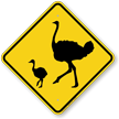 Ostrich with Chick Crossing Sign