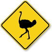 Ostrich Crossing Sign