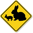Rabbit with Bunny Crossing Sign