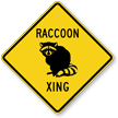 Raccoon Xing Symbol Sign