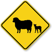 Sheep with Lamb Crossing Sign
