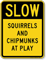 Squirrels And Chipmunks At Play Slow Sign